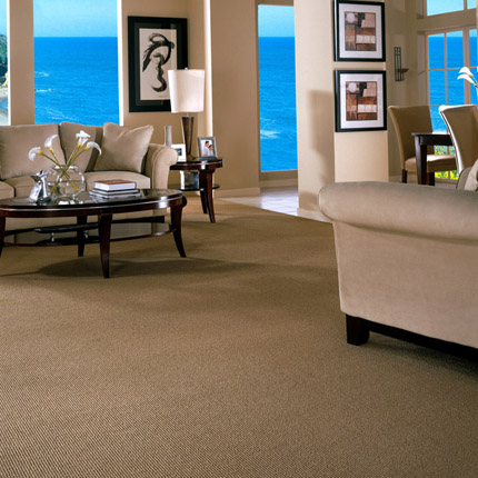berber carpet is both practical and stylish in this living room