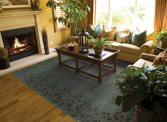 We Carry Area Rugs From These Companies